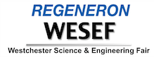 WESEF Logo